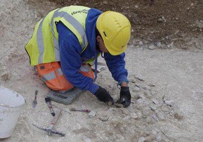 Larkhill enclosure excavation -  Wessex Archaeology